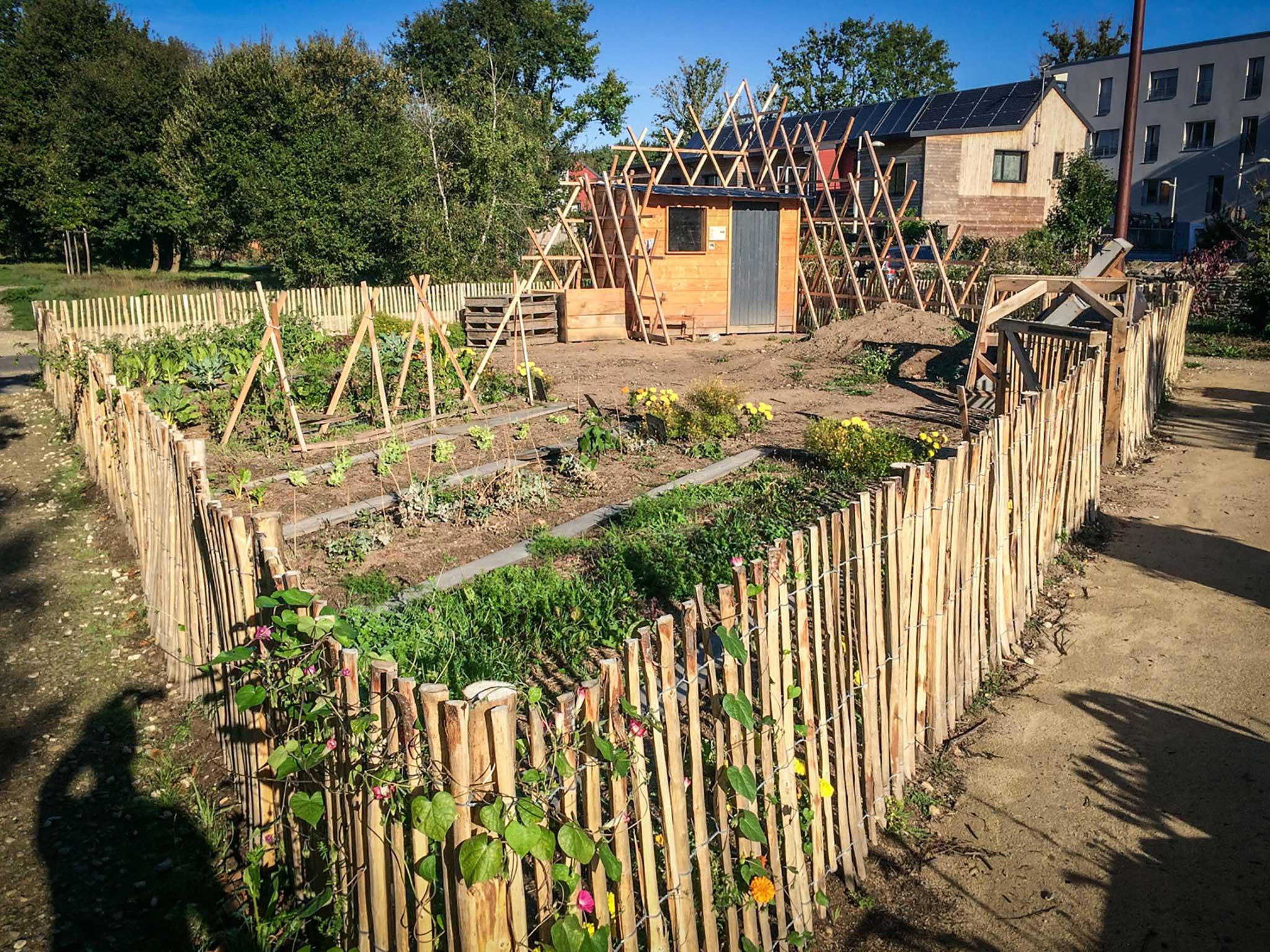 Legumes A Mettre Dans Le Jardin le trait d'oignon, un jardin collectif au cœur du quartier